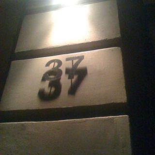 37/37 no signals