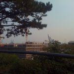 Holzhafen
