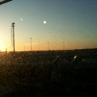 Fuimicino Sunset