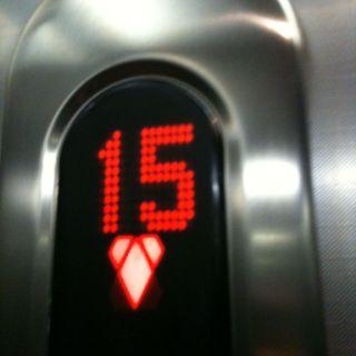 15. Stock