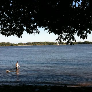 Gassi schwimmen