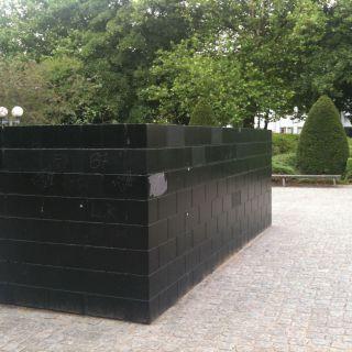 Black Form