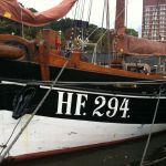 HF 294