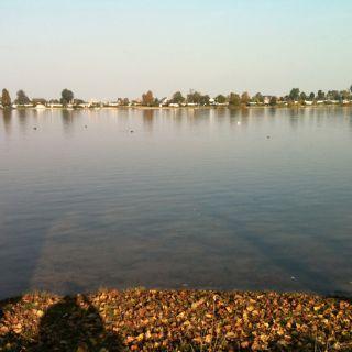 Hohendeicher See