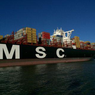 MSC Maya