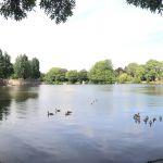 Hayns Park