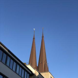 St. Petri Hahn