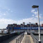 Cosco Shipping Gemini