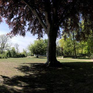 Heine Park
